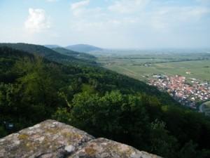 Weinprobe auf der Burg Madenburg - Pfalz