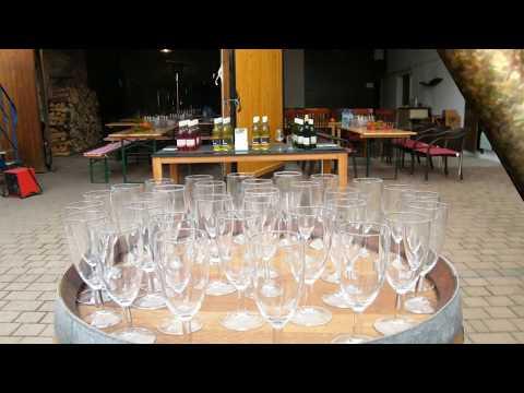 Weinwanderung mit Weinprobe in der Pfalz erleben