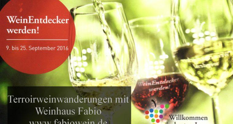 WeinEntdecker werden mit Terroir-Weinwanderung