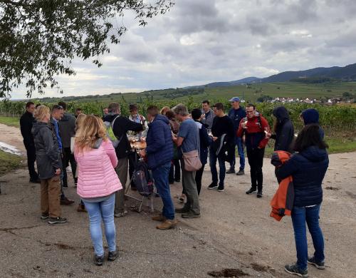 Singlewandern in Rheinland Pfalz